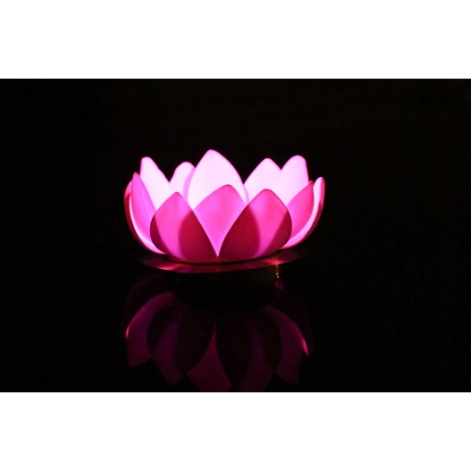 Fuchsia Nymphea LED Water Lantern