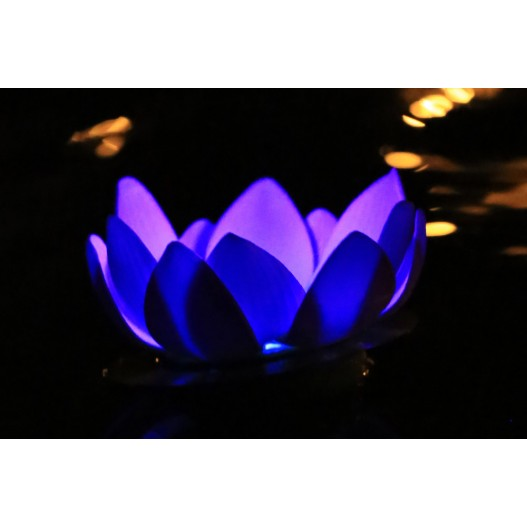 Turquoise Nymphea LED Water Lantern