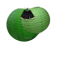 Dark Green Paper Lantern Lights