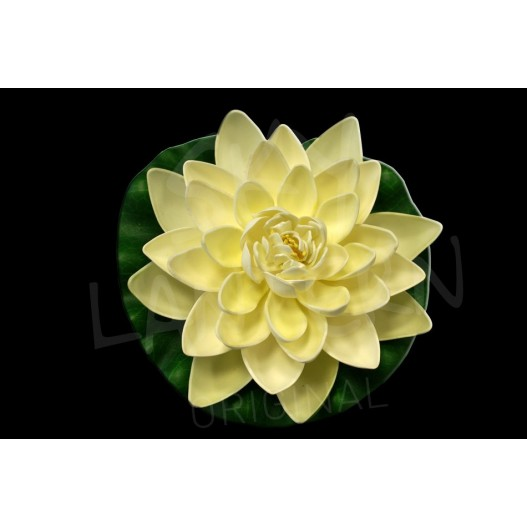 White Lotus floating flower