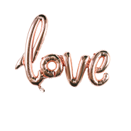 Champagne Pink LOVE Balloon