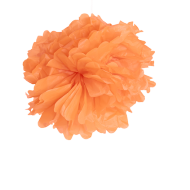 Pompons Corail 40cm x2 (Nouvelle Collection)